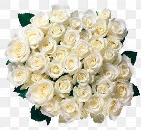 Whire Roses Transparent Picture - Garden Roses Flower Bouquet Clip Art PNG