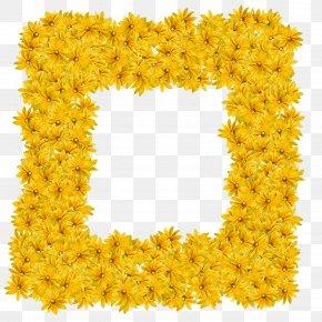Daffodil Film Frame - Flower Wreath Frame PNG