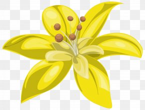 Yellow Flower Image - Yellow Flower Clip Art PNG