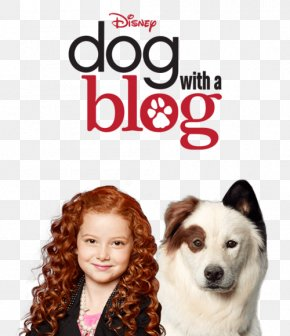 Season 2 Avery Jennings Stan Runs AwayOthers - G Hannelius Dog With A Blog PNG