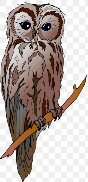 Barn Owl - Great Horned Owl Drawing Clip Art PNG
