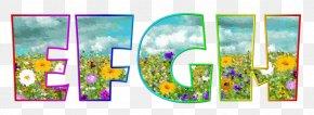 Letter Case Alphabet Font - Alphabet Lettering Typeface Font PNG