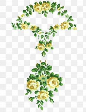 Floral Design - Flower Floral Design Collage PNG