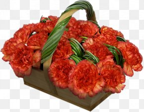 Carnations - Red Meat Cut Flowers Web Hosting Service PNG