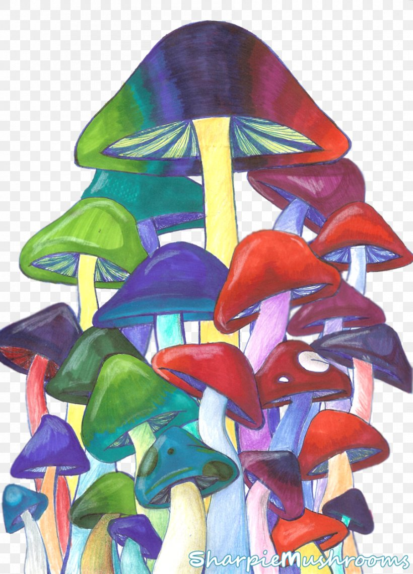 Edible Mushroom Psilocybin Mushroom Magic Mushrooms Drawing, PNG, 900x1253px, Mushroom, Art, Art Museum, Colored Pencil, Costume Design Download Free