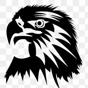 Eagle Head Image - Eagle Clip Art PNG