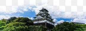 Japan Tokyo Tourist Attractions - Odaiba Tokyo Tower Osaka Mount Fuji Tourism PNG
