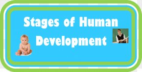 Woman Printing - Human Development Child Development Stages Human Behavior Human Resources PNG