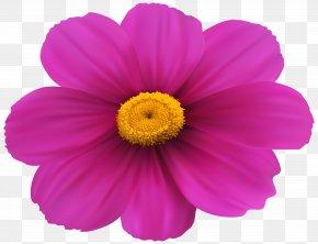 Magenta Flower Transparent Clip Art Image - Magenta Flower Pink Rose Clip Art PNG