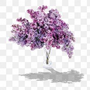 Lilac - Lilac Flower Purple Clip Art PNG