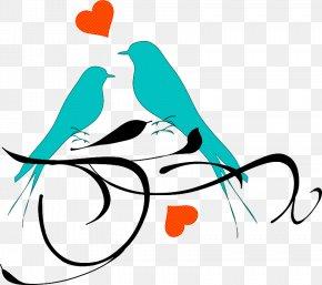 Line Art Aqua - Aqua Clip Art Line Graphic Design Font PNG