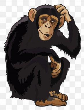 Monkey Clipart Image - Chimpanzee Ape Monkey Clip Art PNG