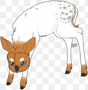 Reindeer - Reindeer Horse Donkey Dog Pack Animal PNG