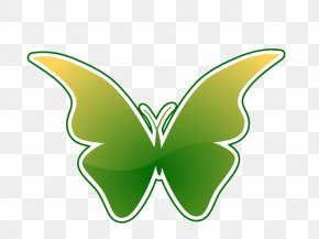 Vector Butterfly - Butterfly Nymphalidae Euclidean Vector PNG