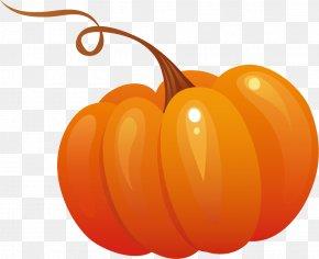 Pumpkin - Pumpkin Pie Calabaza Clip Art PNG