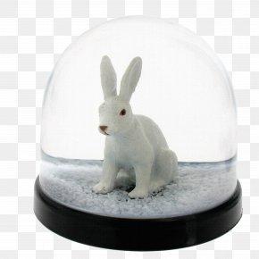 Crystal Rabbit - Snow Globe Amazon.com Christmas Ornament Me To You Bears PNG