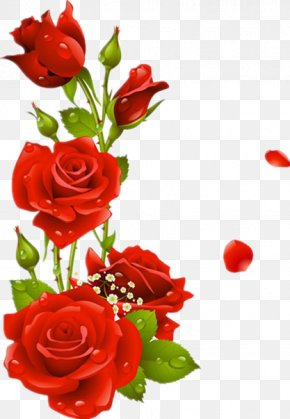Red Roses - Borders And Frames Flower Rose Picture Frame Clip Art PNG