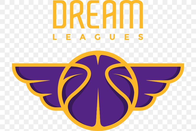 Referee Dream League Soccer Basketball Official Los Angeles