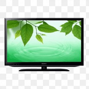 Directtohome Television In India - LED-backlit LCD High-definition Television Indore Television Set PNG