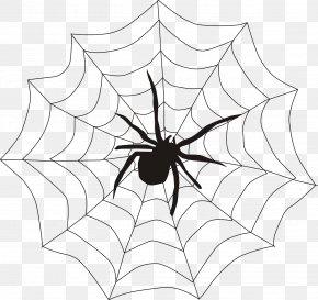 Spider Web - Spider Web Spider Monkey Clip Art PNG