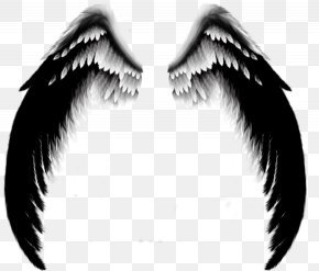 Wing - DeviantArt Wing Angel PNG
