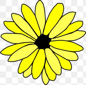 Hawaii Flower - Flower Drawing Common Daisy Clip Art PNG