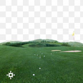 Golf Background Material - Golf Course Golf Equipment PNG