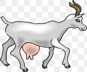 Goat - Boer Goat Cattle Animal Clip Art PNG