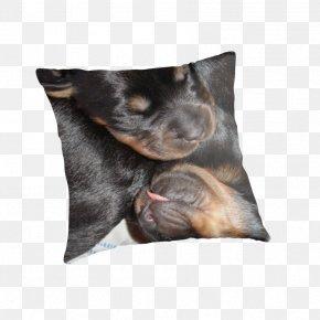 Puppy - Puppy Manchester Terrier Rottweiler Dog Breed Throw Pillows PNG