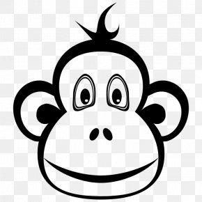 Face - Ape Chimpanzee Monkey T-shirt Orangutan PNG