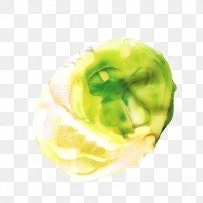 Brussels Sprout Lettuce - Green Leaf Background PNG