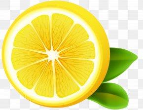 Lemon Transparent Clip Art Image - Lemon-lime Drink Sweet Lemon Citron PNG