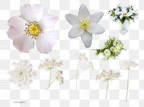 Wild Flowers - Cut Flowers Floral Design Clip Art PNG