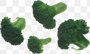 Broccoli Image - Broccoli Slaw PNG
