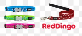 Dog Collar - Leash Dog Collar Dog Collar Dingo PNG