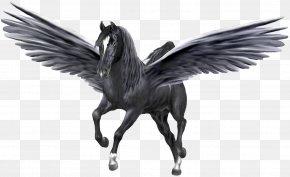 Pegasus - Medusa Pegasus Poseidon Desktop Wallpaper Unicorn PNG