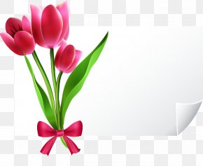 Hand-painted Tulip Vector Greeting Cards - Greeting Card E-card PNG