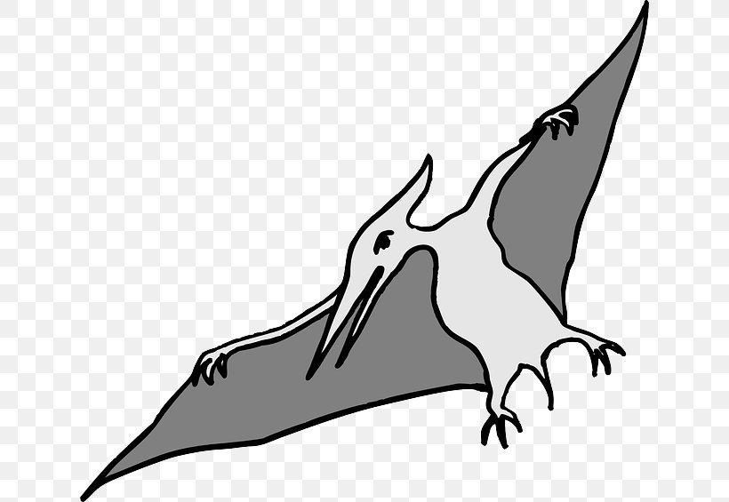Pterodactyls Tyrannosaurus Spinosaurus Pterosaurs Flying Reptiles, PNG, 640x565px, Pterodactyls, Art, Artwork, Beak, Bird Download Free