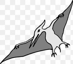 Dinosaur Vector - Pterodactyls Tyrannosaurus Spinosaurus Pterosaurs Flying Reptiles PNG