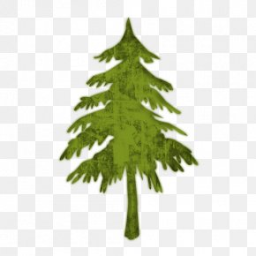 Evergreen Or Fir Tree (Trees) 2 Icon #052088 » Icons Etc - Christmas Snow Drawing Clip Art PNG