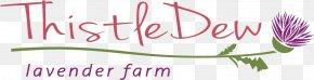 Lavender Fields - Petal Logo Floral Design Font PNG