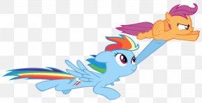 Rainbow Dash Sonic Rainboom Desktop Wallpaper Png 800x446px Rainbow Dash Art Artist Beak Bird Download Free But not before walking through a ton of mush and mud. rainbow dash sonic rainboom desktop