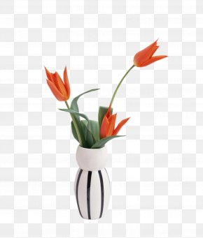 Vase - High-definition Television Display Resolution 4K Resolution 1080p Wallpaper PNG