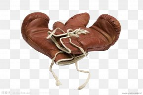 Boxing Gloves - Boxing Glove Punch Stock Photography PNG