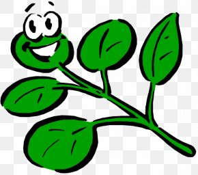 Smiley Plant Cliparts - Plant Cartoon Drawing Clip Art PNG