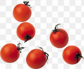 Tomato Image - Tomato Juice Mediterranean Cuisine Vegetable PNG