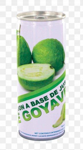 Lime - Coconut Water Lime Lemon Flavor PNG