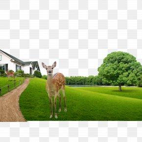 Protection Of Deer Park - Heat Recovery Ventilation Download Gratis PNG
