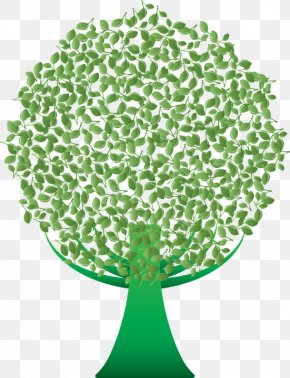 Tree - Tree Green Clip Art Desktop Wallpaper PNG