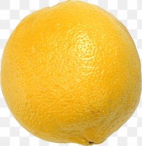 Lemon - Sour Lemon Meringue Pie Lemon Drop Lemonade PNG